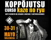 thum_curso_koppo_valencia_kazenoryu